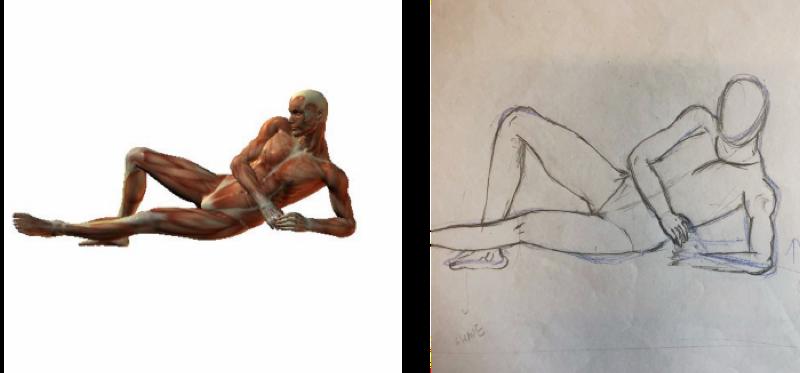 手繪 人體結構比例